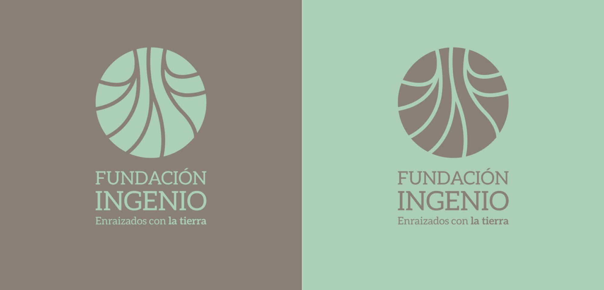 Fundación Ingenio