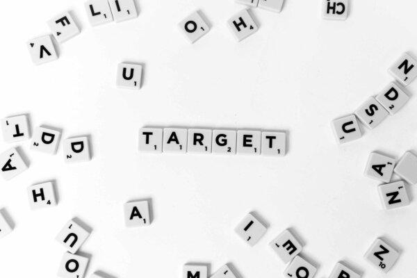 target-conoce-a-tu-publico-y-planifica-2015
